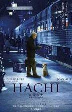 Hachiko by chocoholicatholic