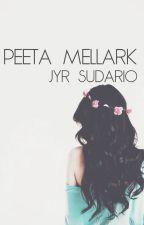 peeta mellark // hood by Dorky_Vampire