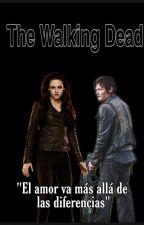 The Walking Dead [Daryl Dixon & Tu] by vicocrazymofo