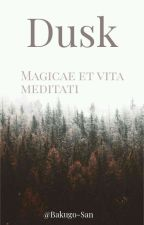 Dusk by Bakugo-san