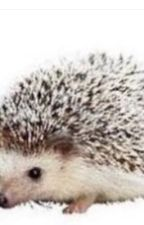 Carl the hedgehog and you  by monet_fed