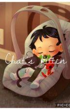 Chat's kitten.  by Marichat_queen