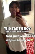 The Earth Boy [Ned Leeds x Male!Reader] by allalalalaa