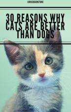 30 Reasons Why Cats are Better than Dogs by Cursedgemstone