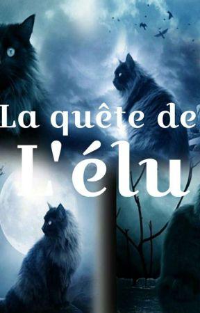 La quête de l' Elu by Hermione_et_Sangat