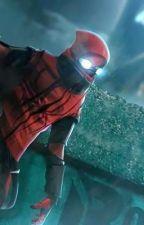 The Vigilante Turned Hero(MHA X Spider-Man Reader) by Darkestfiend