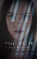 THE SIMULATION (COMPLETE) by secretlyselene