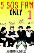 5SOS Funny Book by louistommolover23
