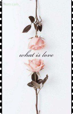 | Thừa Hạo | | Hoàng Quyền Phú Quý | what is love