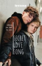 secret lovesong by levxosa