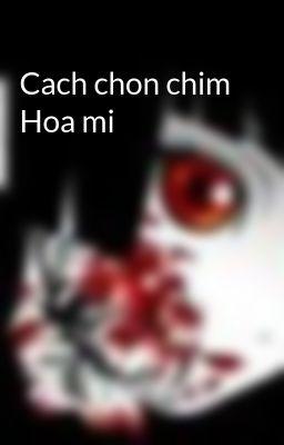 Cach chon chim Hoa mi