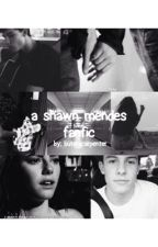 a shawn mendes fanfic by fvckcarpenter