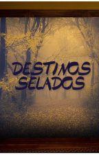 Destinos Selados by StelladoNyah