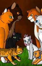 Warrior Cats Role Play( Always Open) by lpswarriorcat