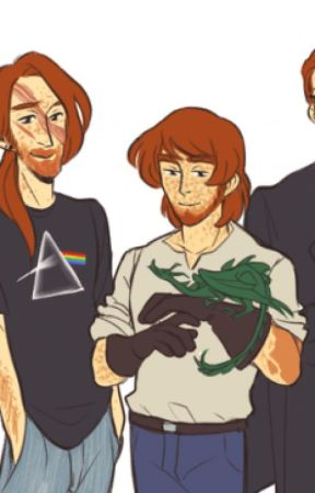 Charlie and that Slytherin     (Charlie x reader) by --ErzaScarlet--
