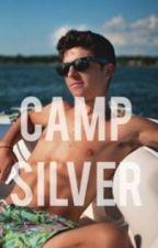 Camp Silver by iFlySkye