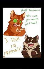 warrior cat memes by burma_the_burmeses