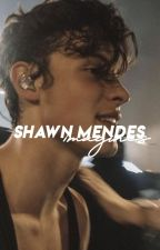 shawn mendes imagines ⋆ by dylshoney