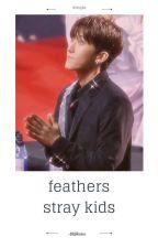 feathers ;; s.cb × l.fl ; l.mh × h.js ; b.ch × h.hj by -bbjikseu