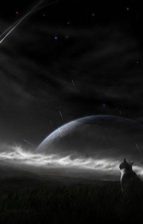 Legend Of A Star: High Edge by NightTheKitterKat