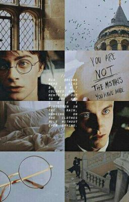 Đọc truyện drarry | drahar | all for draco and harry