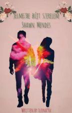 Jelmezbe bújt szerelem - Shawn Mendes by ilona96x