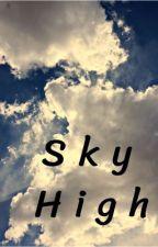 Sky High  by Bm5678904