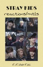 Stray Kids Reactions! (requests closed!) by kikiberkec