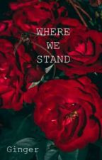 Where We Stand (Yandere Gangster x Reader) by OnlineGinger