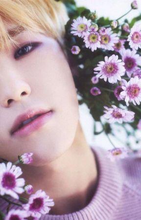 smile flower || soonhoon by renjjjun