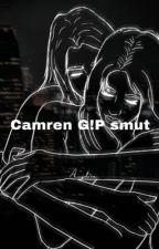 Camren g!p smut book by Jayden1547