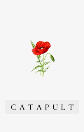 Catapult ▻ Seth Clearwater by bailsofheyyy