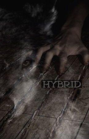 HYBRID [jinkook] by actorseokjin