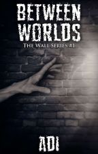 The Wall (The Wall Series #1) by DESTINY5611