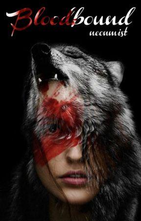 BLOODBOUND | THE 100 by neonmist