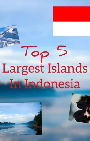 🇮🇩 TOP 5! Largest Islands in Indonesia 🇮🇩  by KirOfficial
