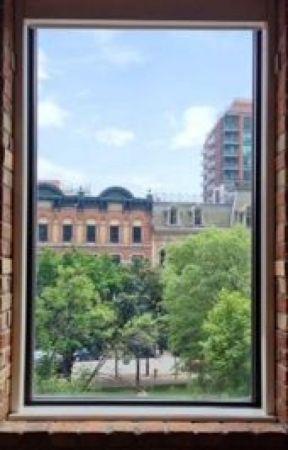 A Random Window by wally_lawless