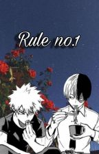 Rule no.1 [Todobaku] by allPanicAnd-noDisco