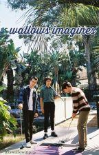 wallows | imagines by letswallowinpity