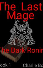The Last Mage: The Dark Mage (Book 1) by Cricketdragon