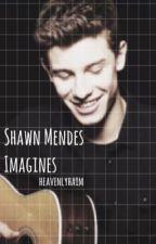 Shawn Mendes Imagines by heavenlyhaim
