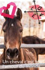 Ma vie d'équitation !! by _xKyuubiUzumakix_
