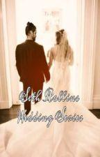 Seth Rollins Wedding Series  by burnitdown9