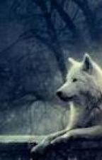 A Shape Shifter Amongst Werewolves by micah42325
