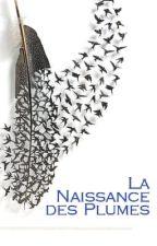 La Naissance des Plumes by DanLipskier