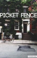 Picket Fence //Louis Tomlinson// by typical_username