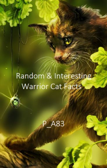 random amp interesting warrior cat facts megan wattpad
