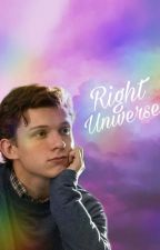 Right Universe - Peter Parker x Reader by risus_