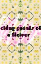 picking petals off a flower 🌷 by sodapopnatty
