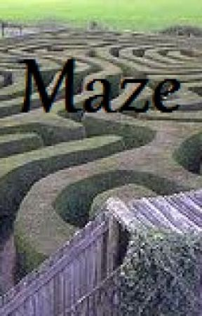 The Maze by olivecheese91